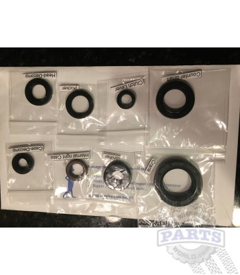ATC350X Oil Seal Kit